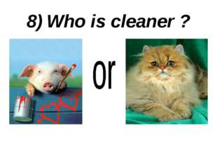 8) Who is cleaner ?