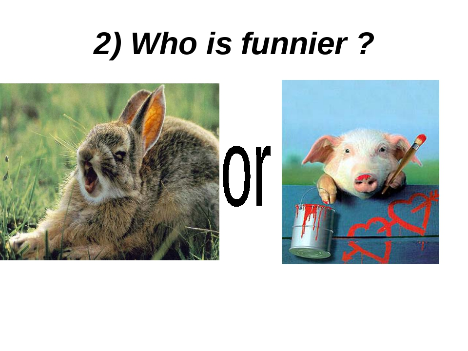2) Who is funnier ?