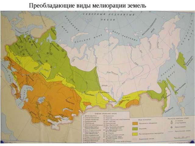Преобладающие виды мелиорации земель