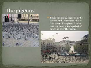 There are many pigeons in the square and Londoners like to feed them. Everybo