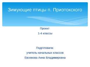 Проект 1-4 классы Подготовила: учитель начальных классов Евсюкова Анна Владим