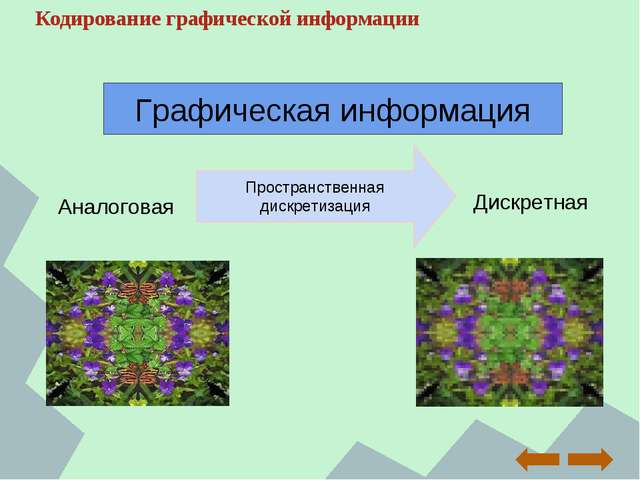 Кодирование графической информации Аналоговая Дискретная Пространственная дис...
