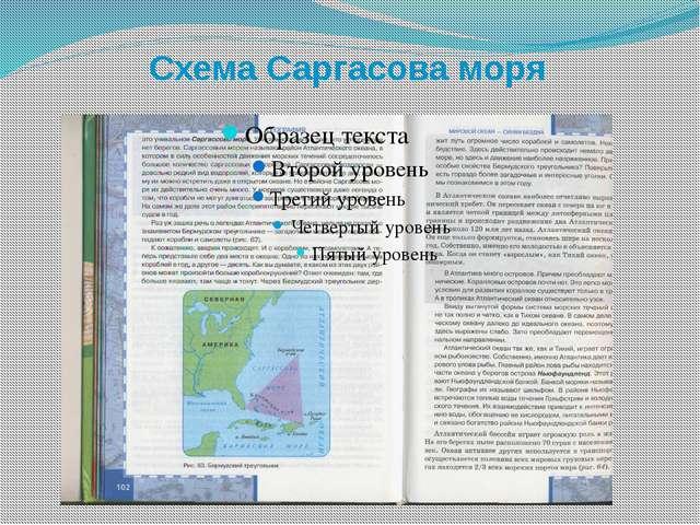 Схема Саргасова моря