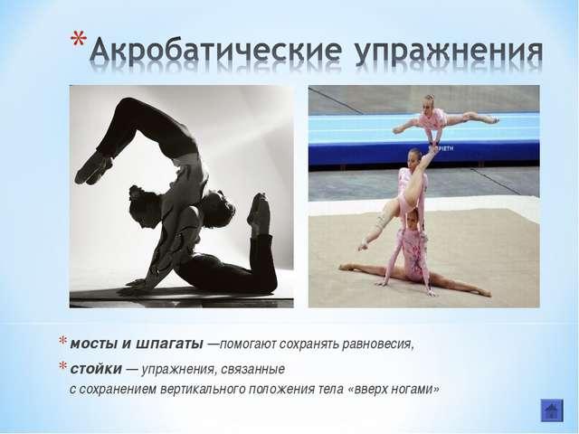 мосты и шпагаты —помогают сохранять равновесия, стойки — упражнения, связанны...