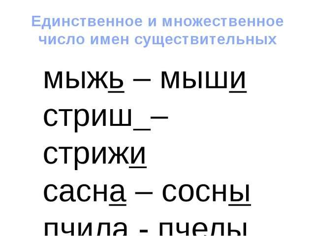 Единственное и множественное число имен существительных мыжь – мыши стриш – с...
