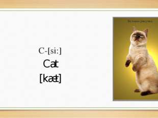 C-[si:] Cat [kæt]