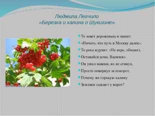 Людмила Легчило «Березка и калина о Шукшине». То зовет дороженька и манит: «Н