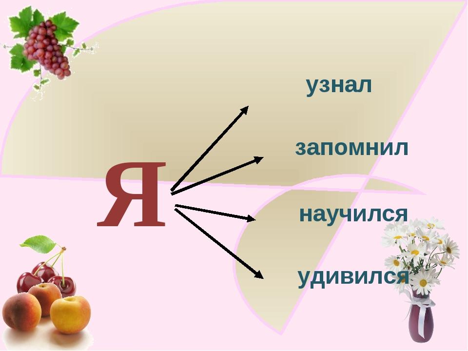 Я узнал запомнил научился удивился http://ku4mina.ucoz.ru/