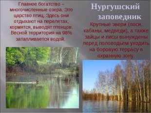 Нургушский заповедник Главное богатство – многочисленные озера. Это царство п