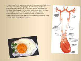 С химической точки зрения, холестерин – жирорастворимый спирт, относящийся к