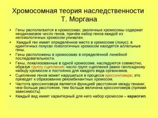 Хромосомная теория наследственности Т. Моргана Гены располагаются в хромосома
