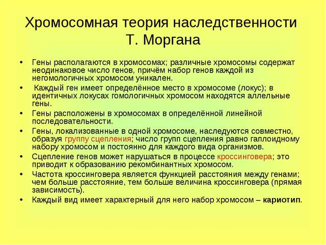 Хромосомная теория наследственности Т. Моргана Гены располагаются в хромосома...
