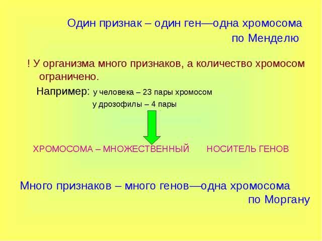 Один признак – один ген—одна хромосома по Менделю ! У организма много признак...
