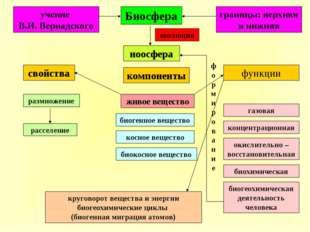 Биосфера границы: верхняя и нижняя ноосфера функции свойства компоненты рассе