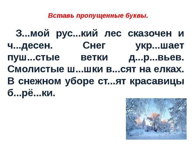 Вставь пропущенные буквы. З...мой рус...кий лес сказочен и ч...десен. Снег...