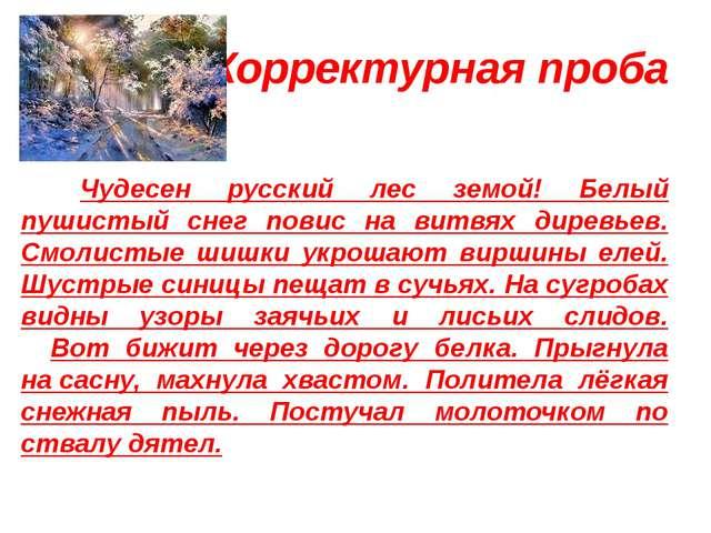 Корректурная проба Зимний лес Чудесен русский лес земой! Белый пушистый сне...