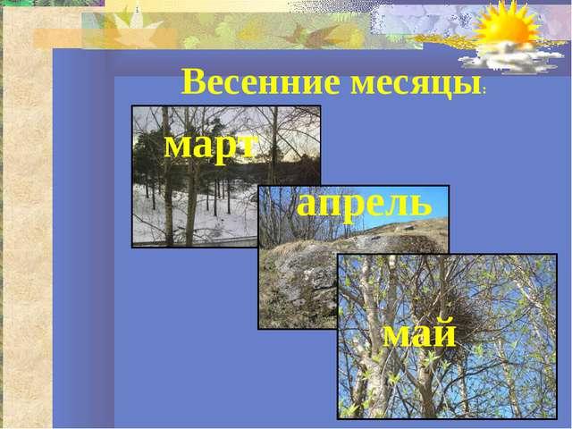 май март апрель Весенние месяцы:
