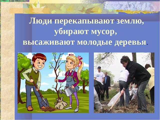 Люди перекапывают землю, убирают мусор, высаживают молодые деревья.