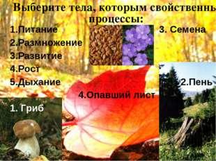 Выберите тела, которым свойственны процессы: 1.Питание 3. Семена 2.Размножени