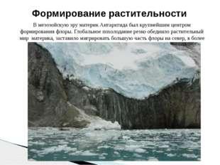 В мезозойскую эру материк Антарктида был крупнейшим центром формирования флор