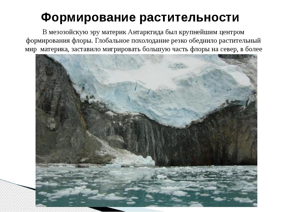 В мезозойскую эру материк Антарктида был крупнейшим центром формирования флор...