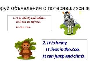 Расшифруй объявления о потерявшихся животных. .It is black and white. It live