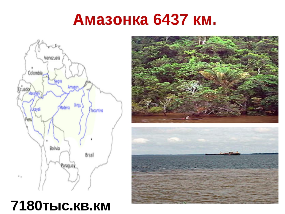 Амазонка 6437 км. 7180тыс.кв.км