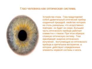 Глаз человека как оптическая система. Устройство глаза. Глаз представляет соб