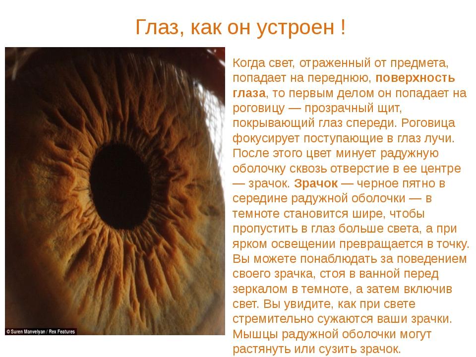 Когда свет, отраженный от предмета, попадает на переднюю, поверхность глаза,...
