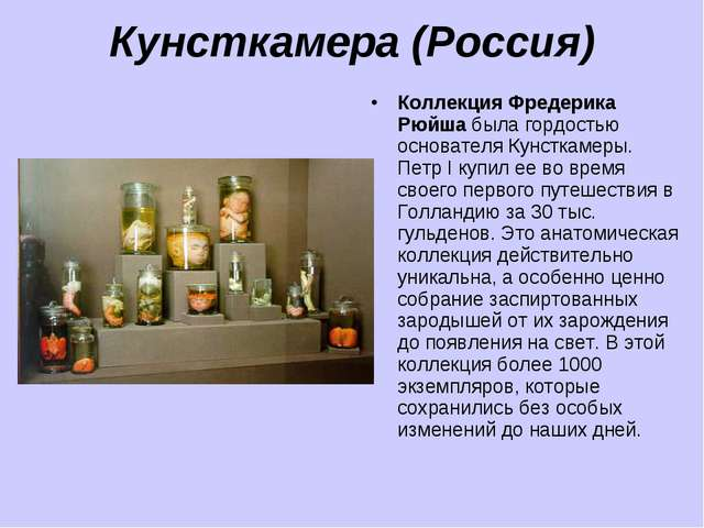 Кунсткамера (Россия) Коллекция Фредерика Рюйша была гордостью основателя Кунс...
