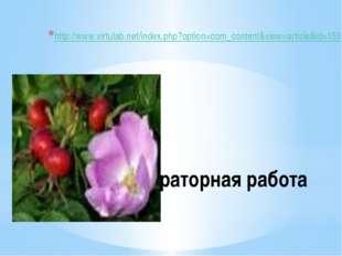 Лабораторная работа http://www.virtulab.net/index.php?option=com_content&view