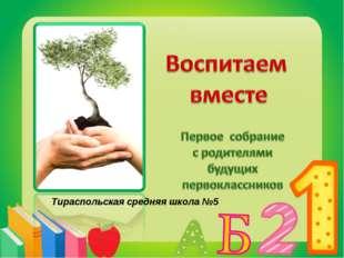 Тираспольская средняя школа №5