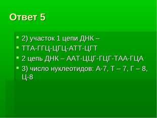 Ответ 5 2) участок 1 цепи ДНК – ТТА-ГГЦ-ЦГЦ-АТТ-ЦГТ 2 цепь ДНК – ААТ-ЦЦГ-ГЦГ-