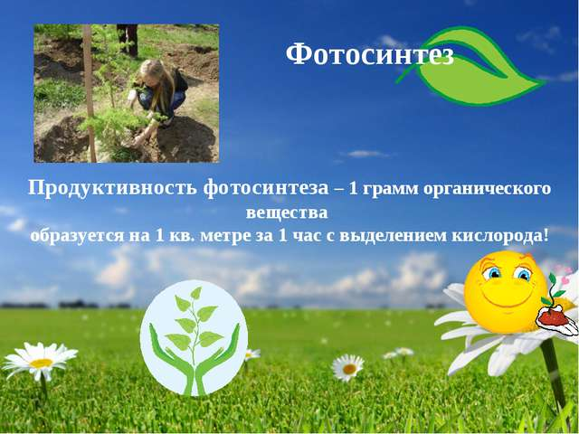 Продуктивность фотосинтеза – 1 грамм органического вещества образуется на 1 к...