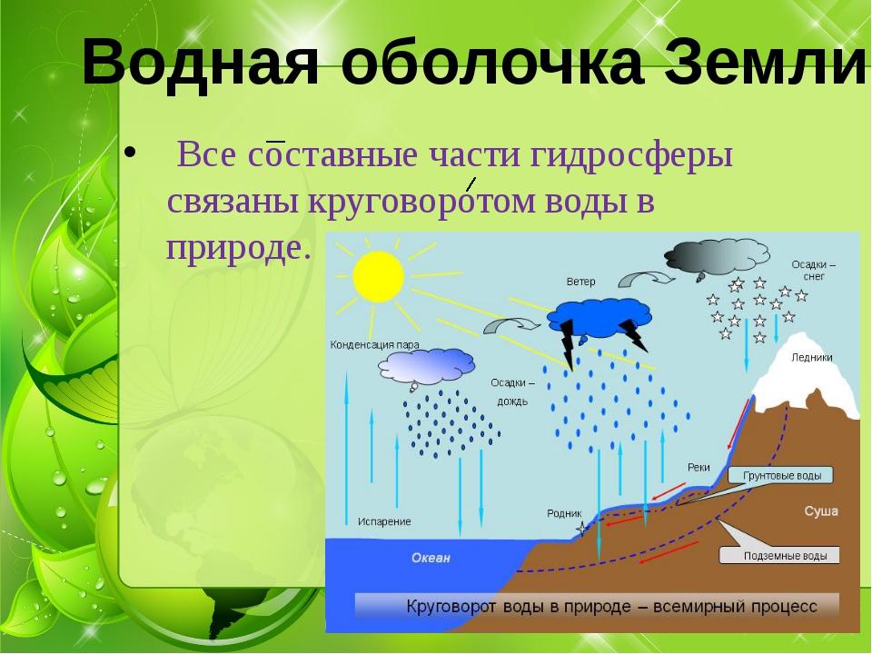 Все составные части гидросферы связаны круговоротом воды в природе. Водная о...