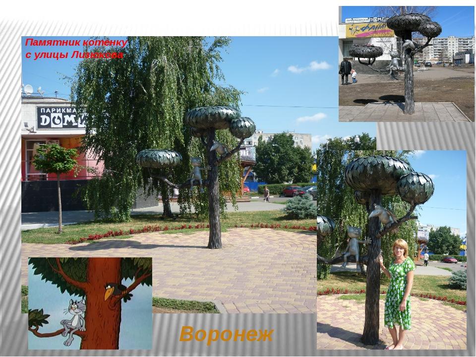 Памятник котенку сулицы Лизюкова Воронеж
