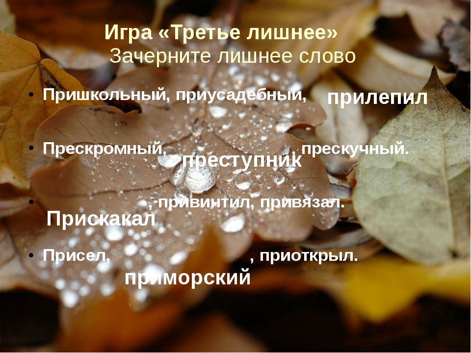 Игра «Третье лишнее» Зачерните лишнее слово Пришкольный, приусадебный, . Прес...