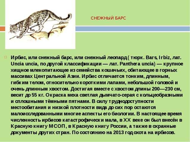 СНЕЖНЫЙ БАРС Ирбис, или снежный барс, или снежный леопард ( тюрк. Bars, Irbiz...