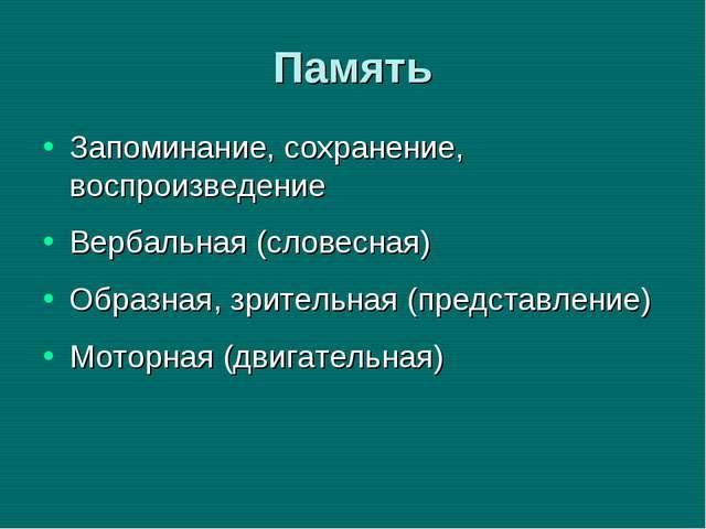 Память Запоминание, сохранение, воспроизведение Вербальная (словесная) Образн...