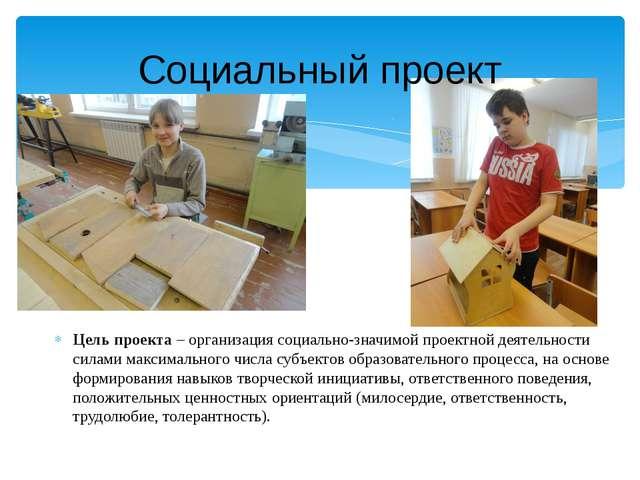 Социальный проект Цель проекта– организация социально-значимой проектной дея...