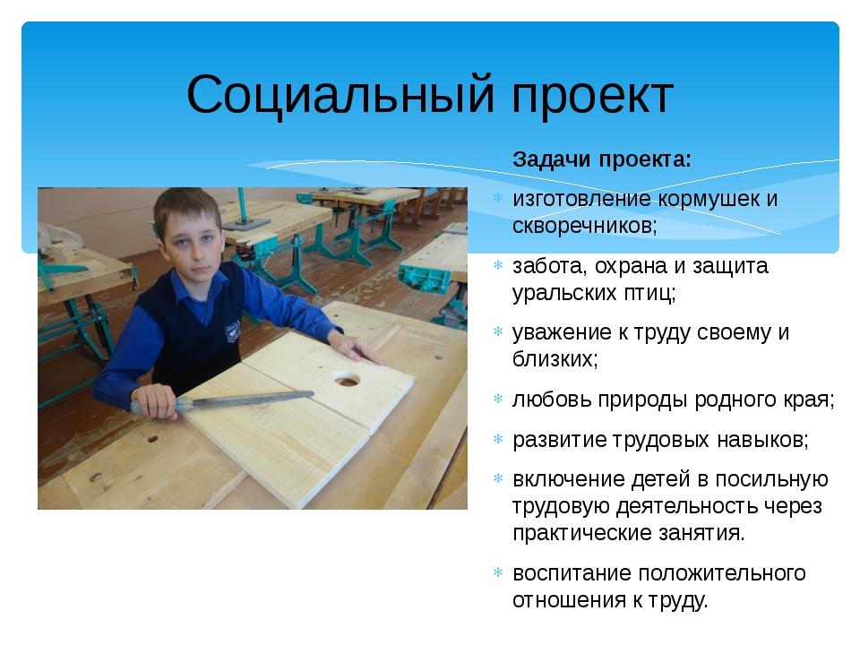 Социальный проект Задачи проекта: изготовление кормушек и скворечников; забот...