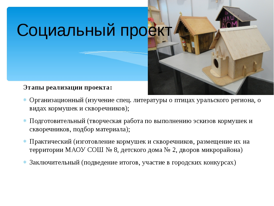 Социальный проект Этапы реализации проекта: Организационный (изучение спец. л...