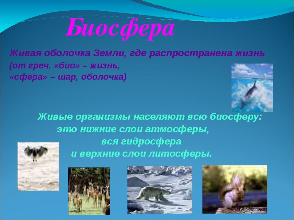 Биосфера Живая оболочка Земли, где распространена жизнь (от греч. «био» – жи...