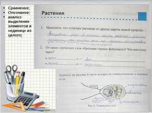 Сравнение; Опознание; анализ- выделение элементов и «единиц» из целого;