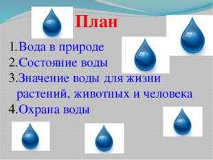 План Вода в природе Состояние воды Значение воды для жизни растений, животных