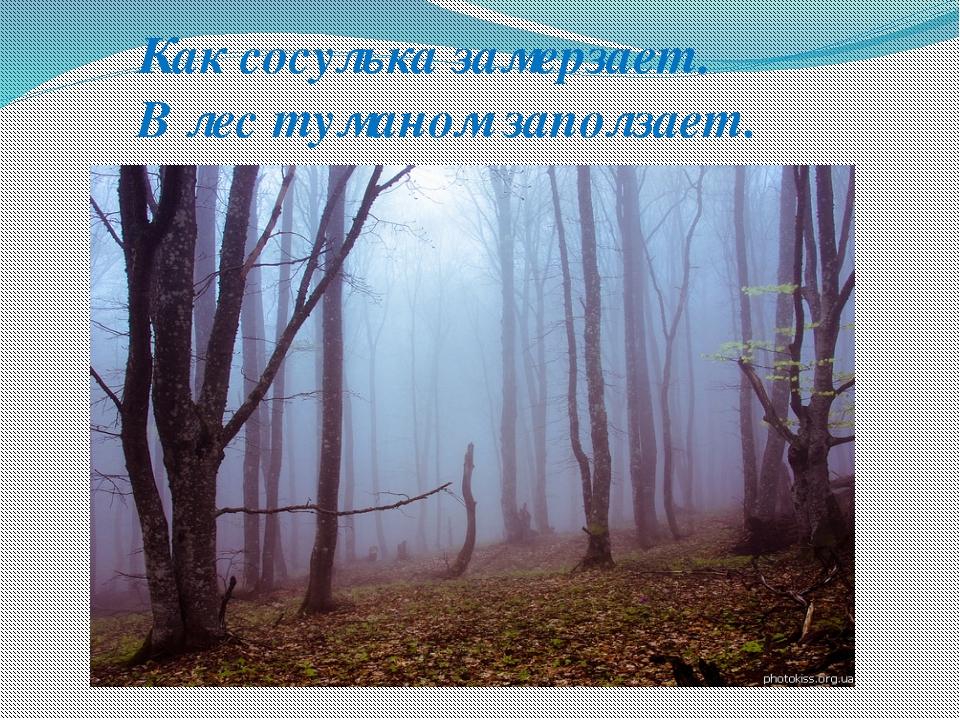 Как сосулька замерзает. В лес туманом заползает.