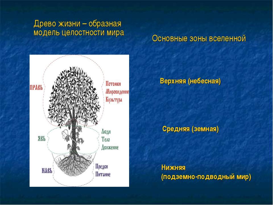 Основные зоны вселенной Верхняя (небесная) Средняя (земная) Нижняя (подземно-...