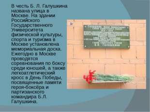 В честь Б.Л.Галушкина названа улица в Москве. На здании Российского Государ