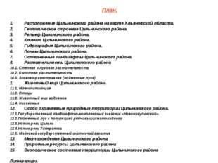 План: Расположение Цильнинского района на карте Ульяновской области. Геологич