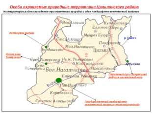 Особо охраняемые природные территории Цильнинского района Арбузовка р.Свияга
